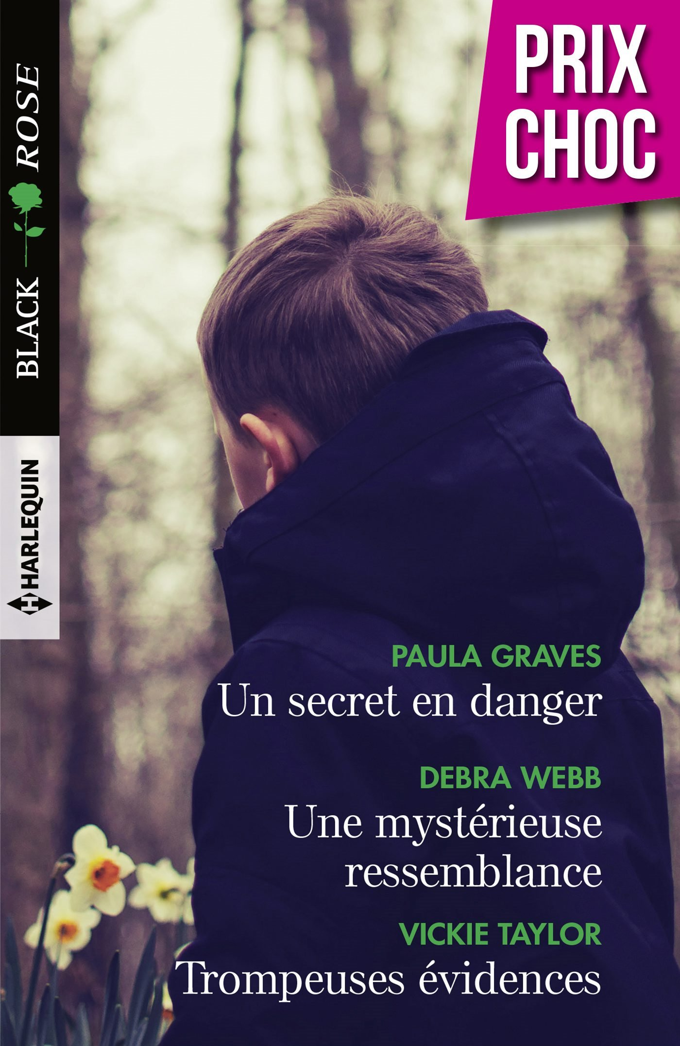 Couverture : Paula Graves, Un secret en danger, Harlequin