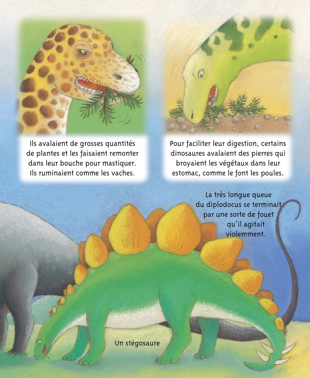 Petites_Imageries_DINOSAURES_008
