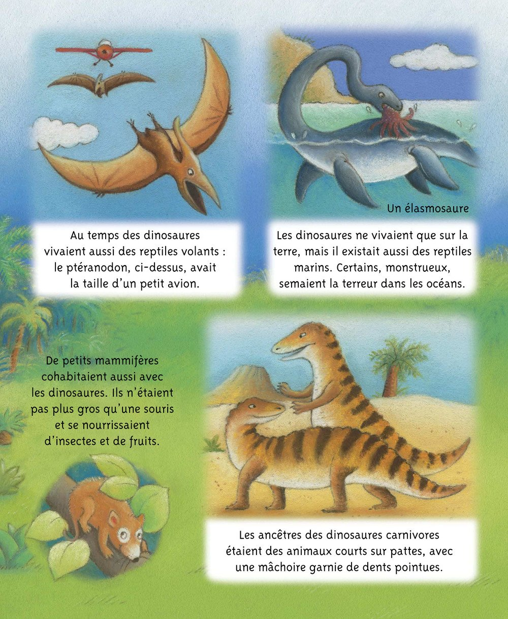Petites_Imageries_DINOSAURES_006