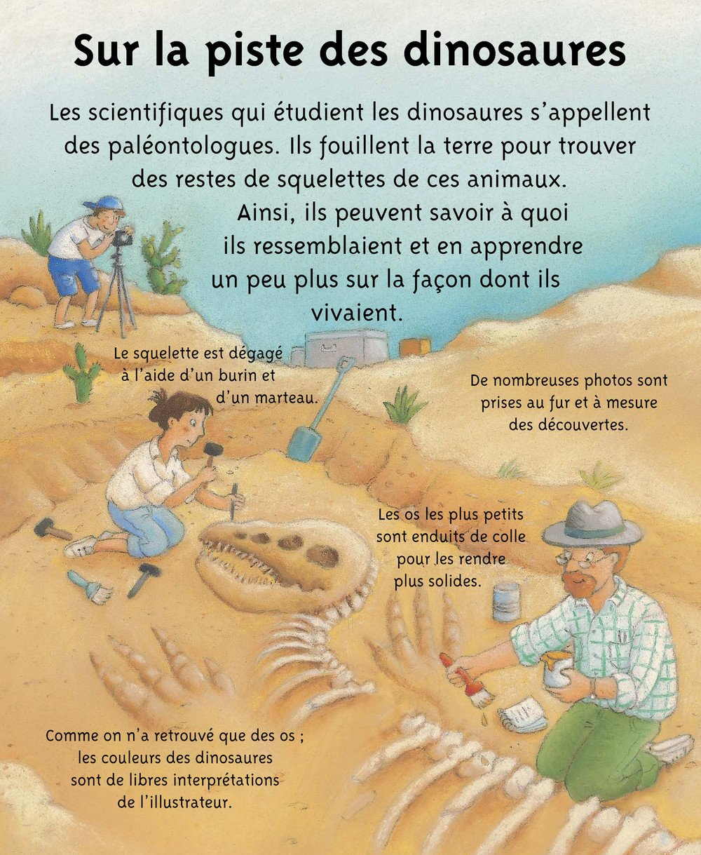 Petites_Imageries_DINOSAURES_003