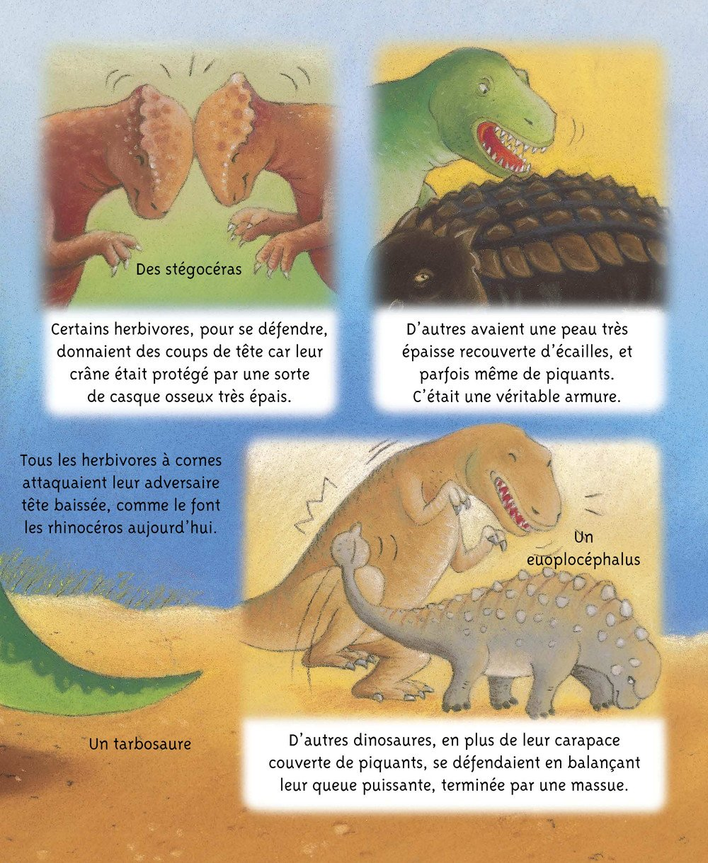 Petites_Imageries_DINOSAURES_010