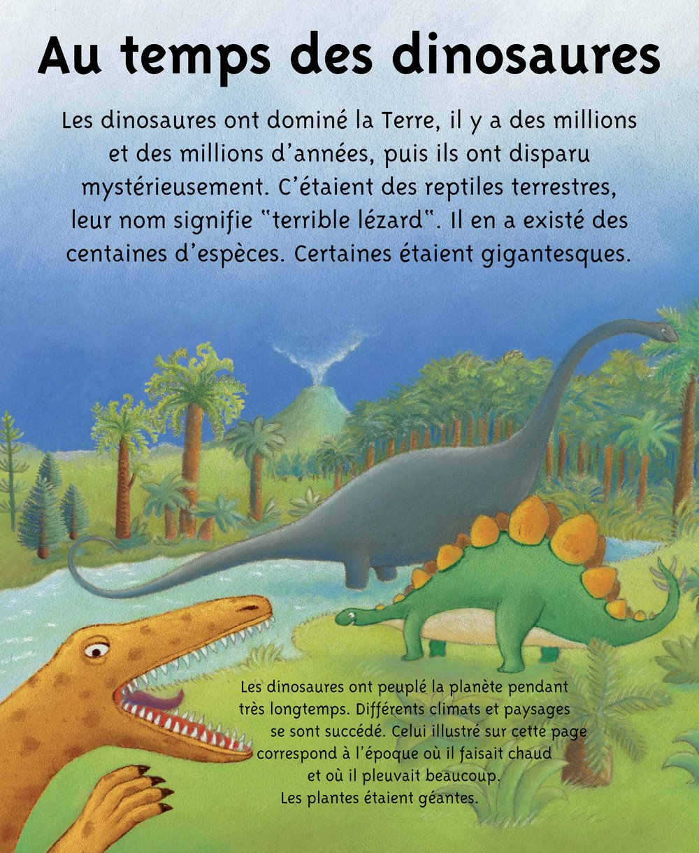 Petites_Imageries_DINOSAURES_005