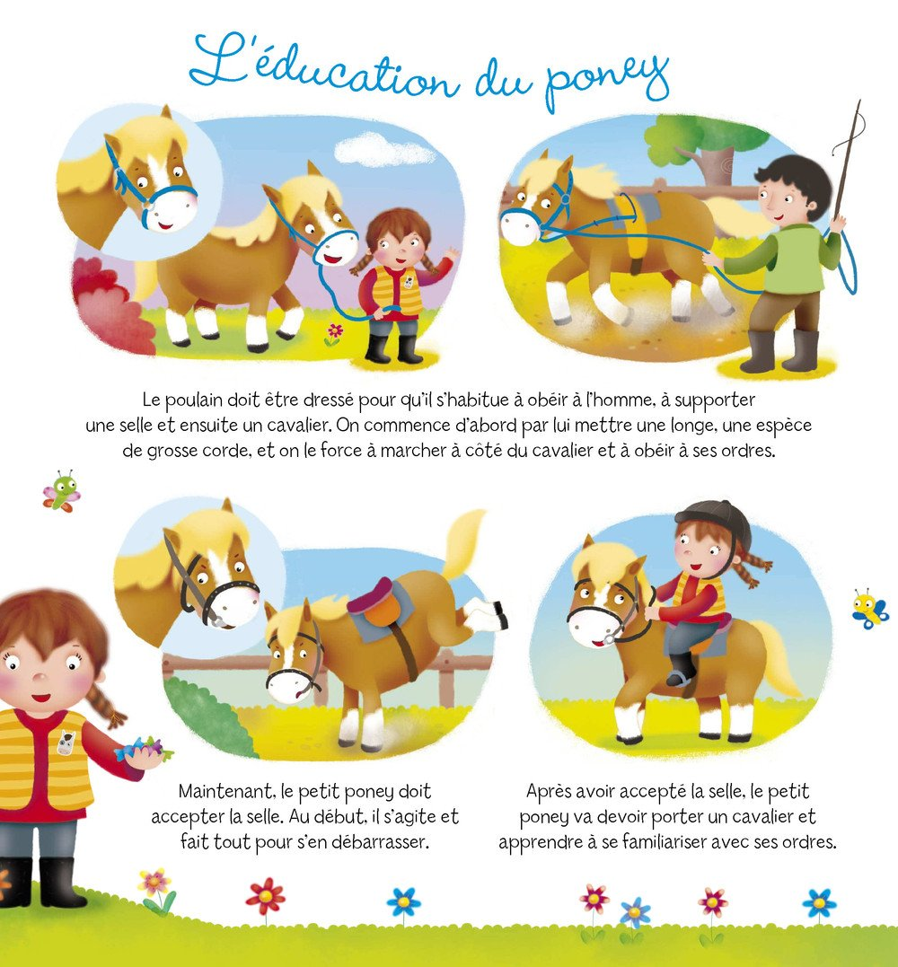 Decouvertes_poney_008