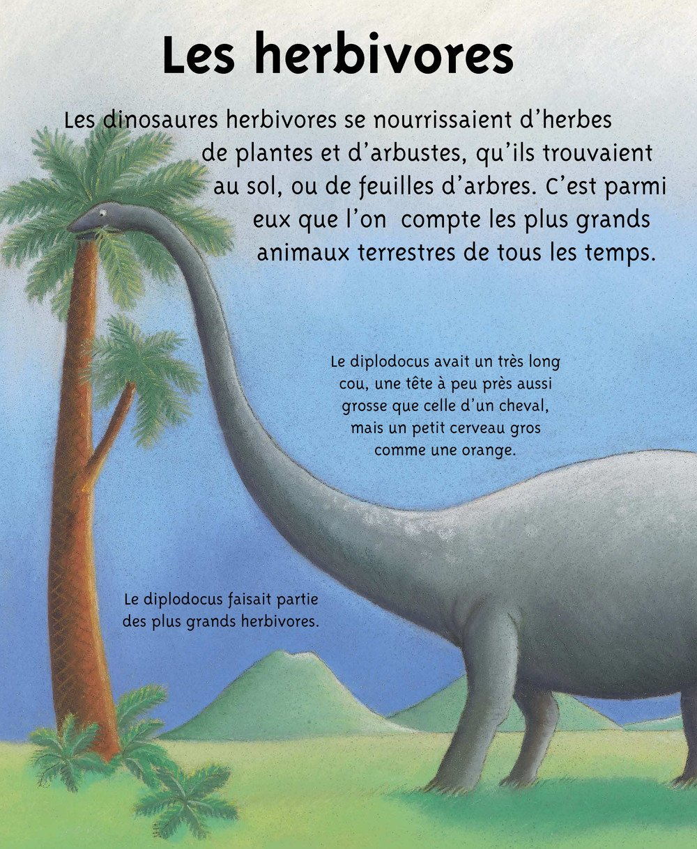 Petites_Imageries_DINOSAURES_007